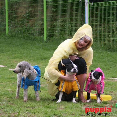 S Puppia PALA-RM858 Race Track gelb